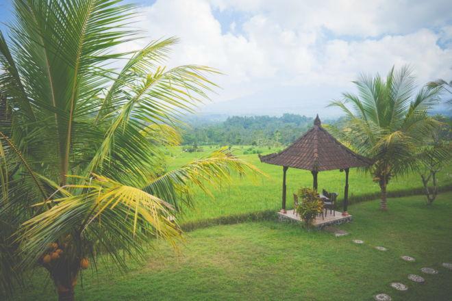 Voyage à Bali - Sidemen Great Mountain View